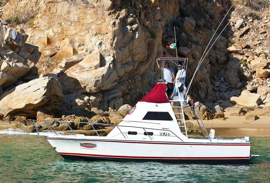 Sport fishing cabo san lucas cabo discount tours for Los cabos fishing charters