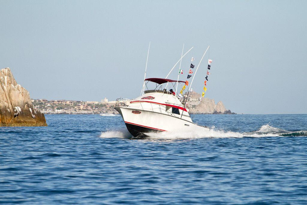 33ft cabo sport fishing charters cabo discount tours for Sport fishing charters