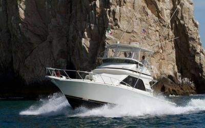 Cabo San Lucas Sport Fishing, the best sportfishing companies in los cabos