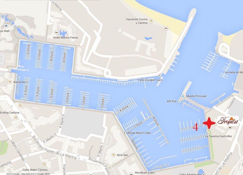 departure location for Pez Gato Cruises