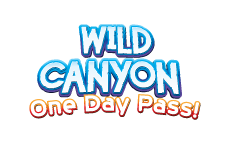 Wild Canyon Day Pass all inclusive day at wild canyon zip lines sling swinger bungee atv tours camel tours animal kingdom