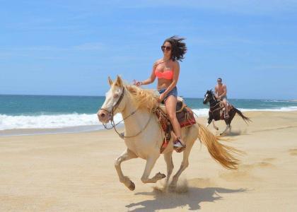 cabo horseback riding Cactus mountain and beach ride near migrino beach with cactus atv tours los cabos cabo san lucas land tours