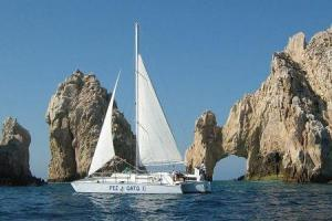 best snorkeling tours in cabo san lucas and los cabos snorkelling