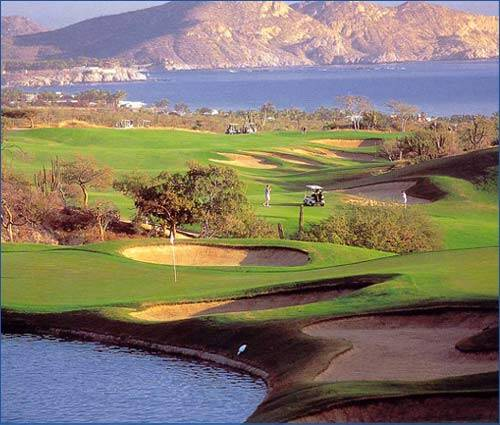 Culture - Los Cabos Beach Condo for Rent in La Jolla  |Cabo San Lucas Golf Courses Map