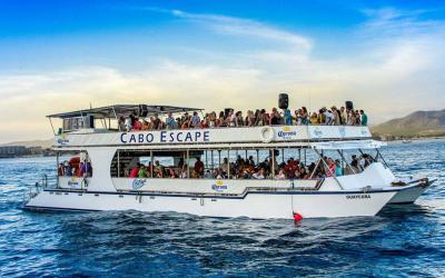 Cabo Escape Sunset Party is the best sunset booze cruise in Los Cabos