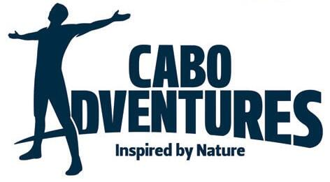 Cabo Adventures Tours and Activities in Cabo San Lucas.