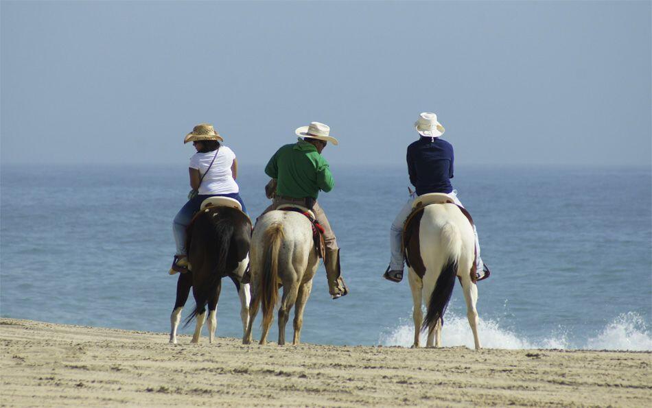 Horseback riding Los Cabos