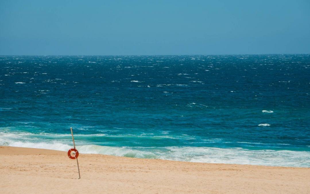 Things to do in Cabo San Lucas: A Day Trip to Espiritu Santo Island