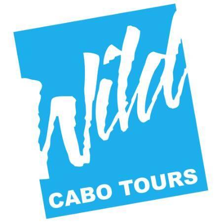 wild cabo tours, cabo escape sunset cruise, sundown party cruise, cabo booze cruise, cabo legend, buccaneer queen